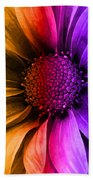 Daisy Daisy Yellow To Purple Beach Towel