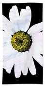 Daisy On Black Beach Towel