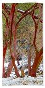 Dancing Manzanitas On The Hillside In Park Sierra-california Beach Towel