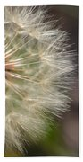 Dandelion Art - So It Begins - By Sharon Cummings Beach Towel