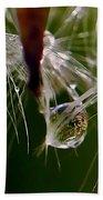 Dandelion Droplets Beach Towel