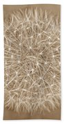 Dandelion Marco Abstract Brown Beach Towel