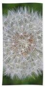 Dandelion Marco Abstract Beach Towel