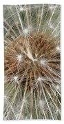 Dandelion Square Beach Towel