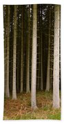 Dark Forest At Kielder Beach Towel