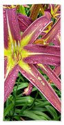 Dark Star Daylilies Beach Towel