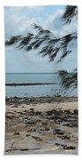 Fannie Bay 1.3 Beach Towel