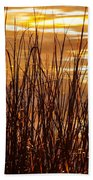 Dawn's Early Light Beach Towel by Karen Wiles
