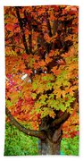 Day Glo Autumn Beach Towel