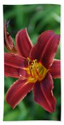 Day Lily 3648 Beach Towel