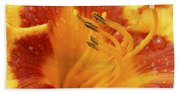Day Lily In The Rain - 688 Beach Towel