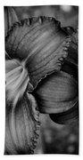 Daylilies Black And White Beach Towel
