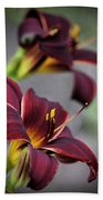 Daylilies Forever Beach Towel