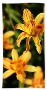 Daylillies0107 Beach Towel