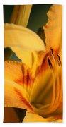 Daylillies0185 Beach Towel