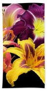 Daylily Banner Beach Towel