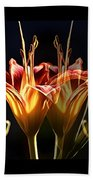 Daylily Doubled Beach Towel