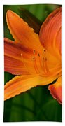 Daylily II Beach Towel