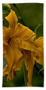 Daylily Picture 474 Beach Towel