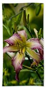 Daylily Picture 494 Beach Towel