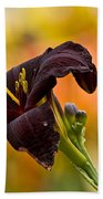 Daylily Picture 514 Beach Towel
