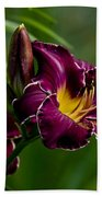 Daylily Picture 526 Beach Towel
