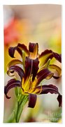 Daylily Picture 541 Beach Towel