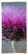Dazzling Thistle Beauty Beach Towel