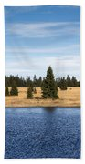 Dead Pond Beach Towel