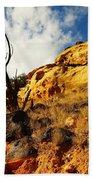 Dead Tree Against The Blue Sky Beach Towel by Jeff Swan