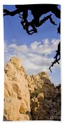 Dead Tree Limb Hanging Over Rocky Landscape In The Mojave Desert Beach Towel