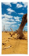 Dead Trees In A Desert Wasteland Beach Towel