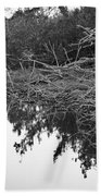 Deadfall Reflection In Black And White Beach Towel