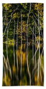Deadwood Beach Towel