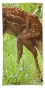 Little Fawn Blue Wildflowers Beach Towel