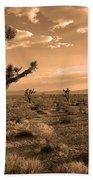 Death Valley Solitude Beach Towel