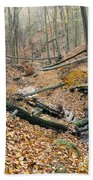 Deciduous Forest With Ravines Beach Towel