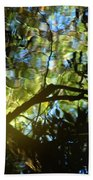 Deep Forest Light Beach Towel