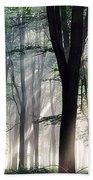 Deep Forest Morning Light Beach Towel