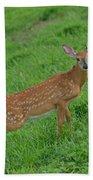 Deer 6 Beach Towel