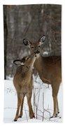 Deer Affection Beach Sheet