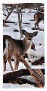 Deer And Snow Beach Towel