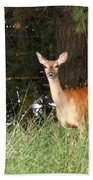 Deer At Dusk V3 Beach Towel