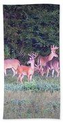 Deer-img-0158-001 Beach Towel