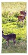 Deer - 0437-004 Beach Towel