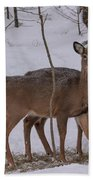Deer In The Trees Beach Towel