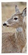 White Tail Deer Profile Beach Towel