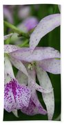 Delicate Orchid Blossoms Beach Towel