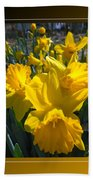 Delightful Daffodils Beach Sheet