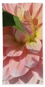 Delightful Smile Dahlia Flower Beach Towel